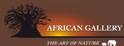 African Gallery